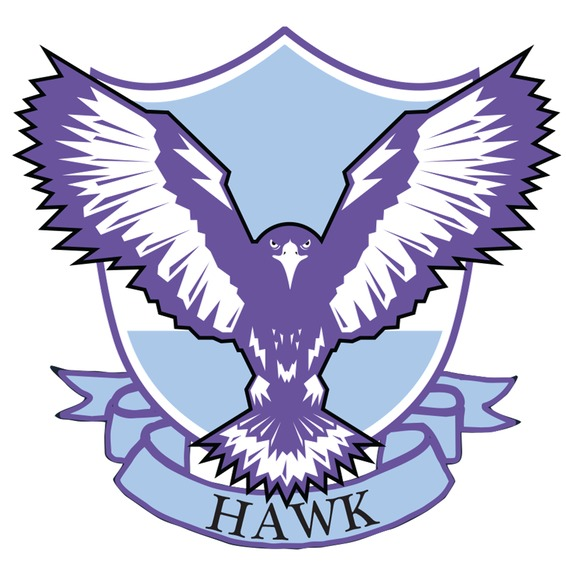 Hawk transparent logo