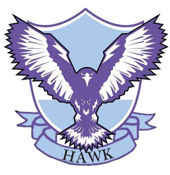 Hawk transparent logo