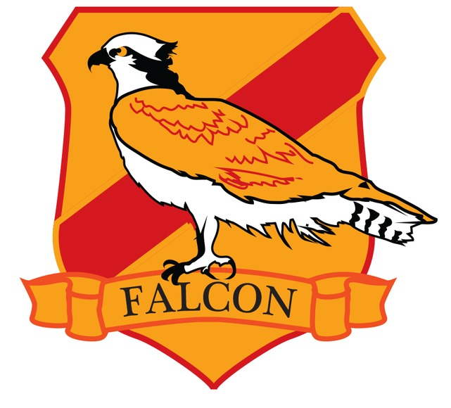 Falcon transparent logo